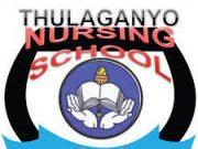 Thulaganyo Nursing School